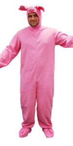 pig fancy dress